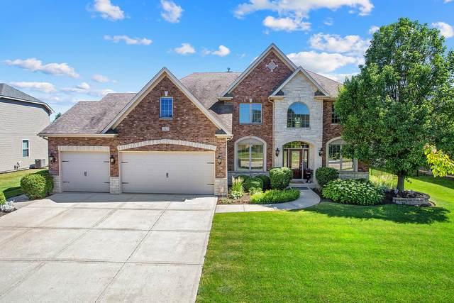 15825 Brookshore Drive, Plainfield, IL 60544 (MLS #11104923) :: O'Neil Property Group