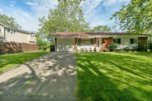 500 Washington Boulevard, Hoffman Estates, IL 60169 (MLS #11105207) :: BN Homes Group