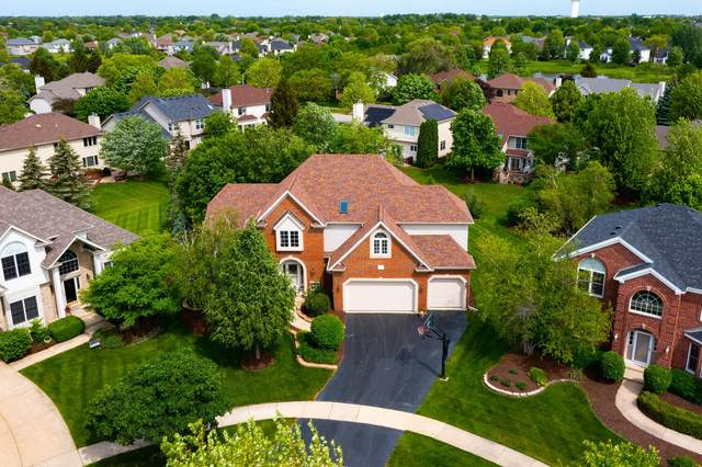 2515 Canfield Court, Naperville, IL 60564 (MLS #11105224) :: Touchstone Group