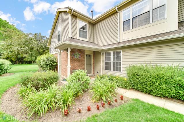 30W026 Laurel Court 30W026, Warrenville, IL 60555 (MLS #11105989) :: BN Homes Group