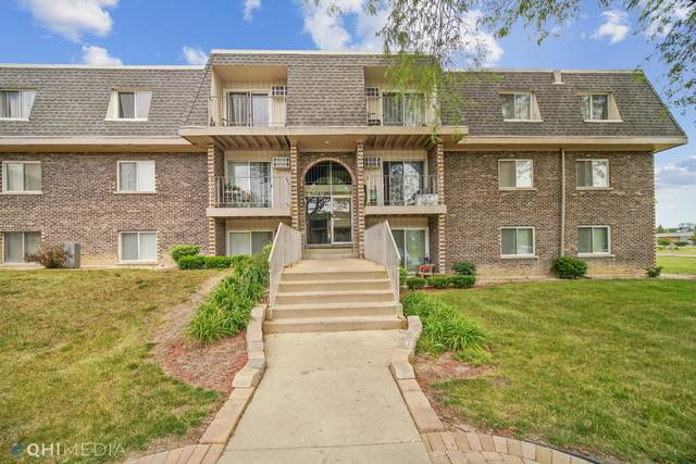 870 Winesap Court #103, Prospect Heights, IL 60070 (MLS #11106135) :: Touchstone Group