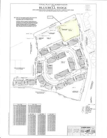 151 E Boughton Road, Bolingbrook, IL 60440 (MLS #11106760) :: The Dena Furlow Team - Keller Williams Realty