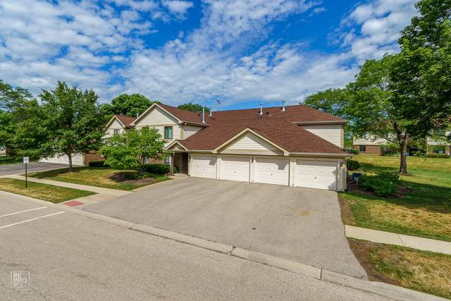 864 E Coach Road #5, Palatine, IL 60074 (MLS #11107053) :: The Wexler Group at Keller Williams Preferred Realty