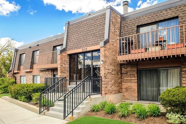 615 Tralee Court 1C, Schaumburg, IL 60193 (MLS #11107102) :: Ryan Dallas Real Estate