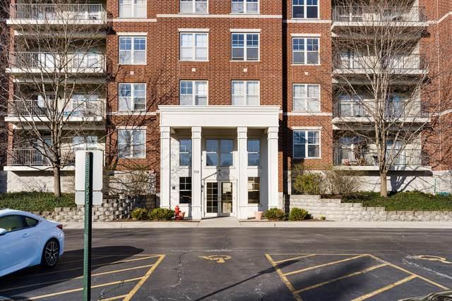 715 Astor Lane #201, Wheeling, IL 60090 (MLS #11108223) :: BN Homes Group