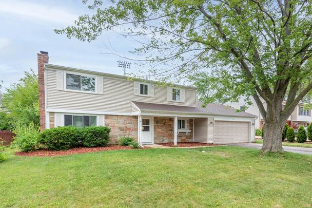 107 N Braintree Drive, Schaumburg, IL 60194 (MLS #11108263) :: O'Neil Property Group