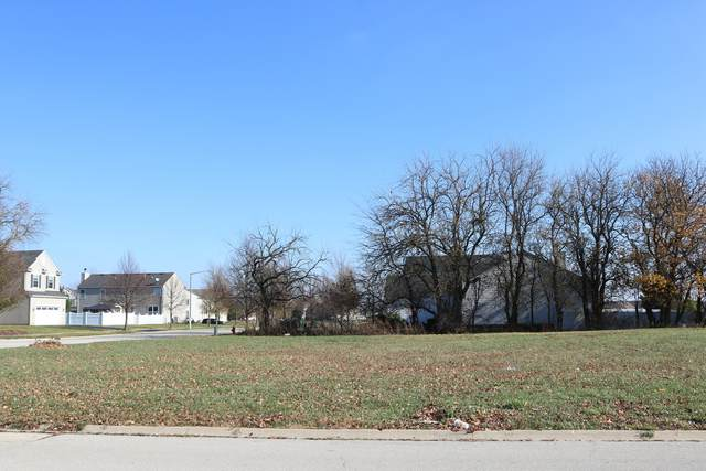 11635 Millennium Parkway, Plainfield, IL 60585 (MLS #11108392) :: Suburban Life Realty
