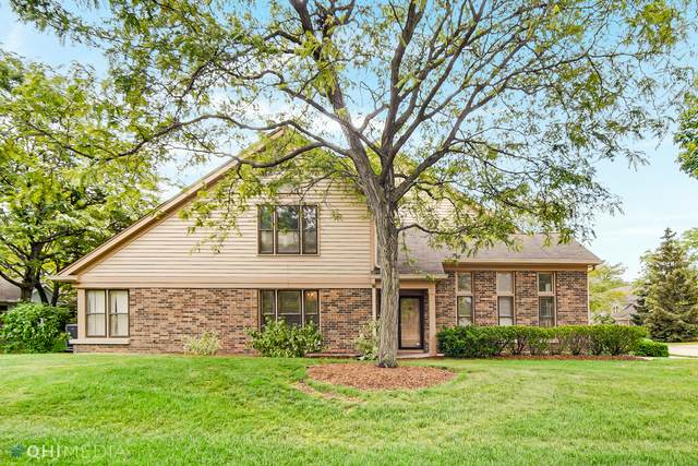 127 Willow Parkway, Buffalo Grove, IL 60089 (MLS #11108562) :: O'Neil Property Group