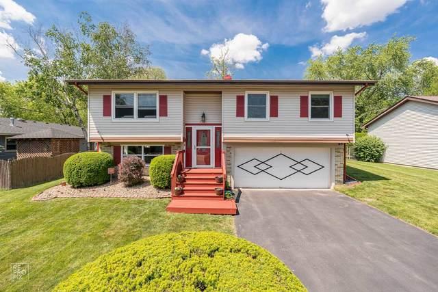 110 Diane Drive, Streamwood, IL 60107 (MLS #11109041) :: Jacqui Miller Homes