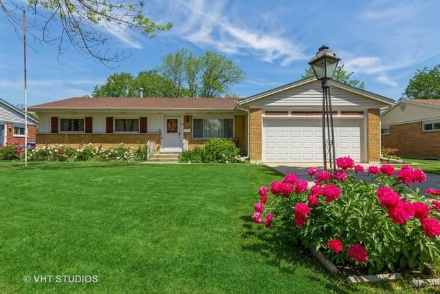234 Anderson Terrace, Des Plaines, IL 60016 (MLS #11109190) :: Touchstone Group