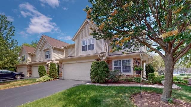 113 Crescent Lane, Schaumburg, IL 60193 (MLS #11109379) :: Angela Walker Homes Real Estate Group