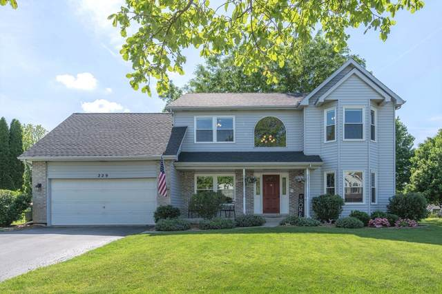 229 Isleview Drive, Oswego, IL 60543 (MLS #11109528) :: BN Homes Group