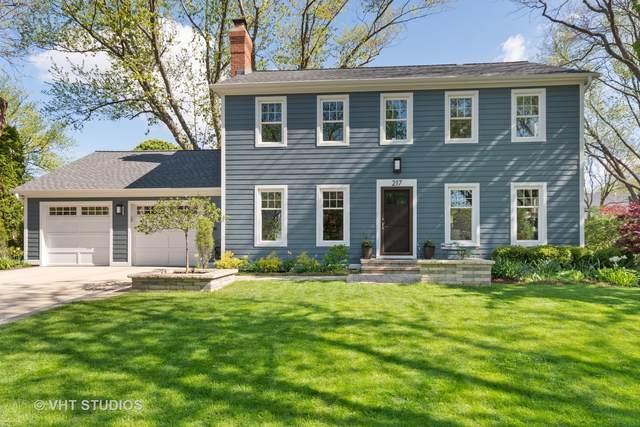 217 E 14th Avenue, Naperville, IL 60563 (MLS #11109548) :: BN Homes Group