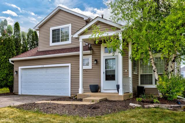 179 Cool Stone Bend, Lake In The Hills, IL 60156 (MLS #11111860) :: Littlefield Group