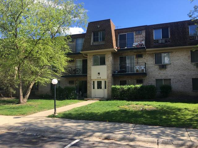238 Shorewood Drive 2A, Glendale Heights, IL 60139 (MLS #11112036) :: BN Homes Group