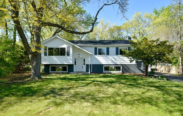 23W542 Turner Avenue, Roselle, IL 60172 (MLS #11112211) :: Touchstone Group