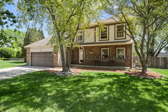 73 Fabish Court, Buffalo Grove, IL 60089 (MLS #11112286) :: BN Homes Group