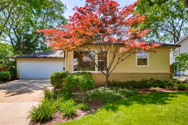 1109 E Alder Lane, Mount Prospect, IL 60056 (MLS #11112479) :: O'Neil Property Group