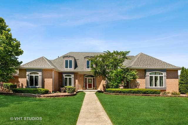 12516 Anand Brook Drive, Orland Park, IL 60467 (MLS #11112569) :: BN Homes Group