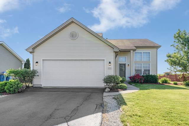 25731 S Daffodil Lane, Monee, IL 60449 (MLS #11112572) :: BN Homes Group