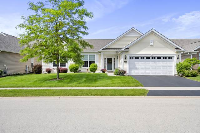 703 Glory Drive, Shorewood, IL 60404 (MLS #11112595) :: BN Homes Group