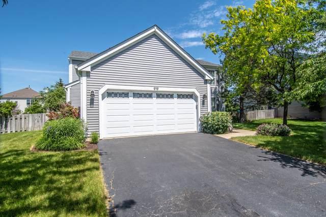 919 Honeysuckle Lane, Aurora, IL 60506 (MLS #11113046) :: Suburban Life Realty