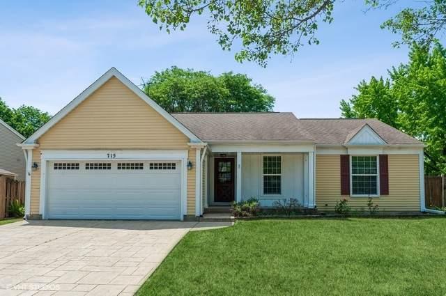 715 Equestrian Drive, Wheeling, IL 60090 (MLS #11113254) :: Jacqui Miller Homes