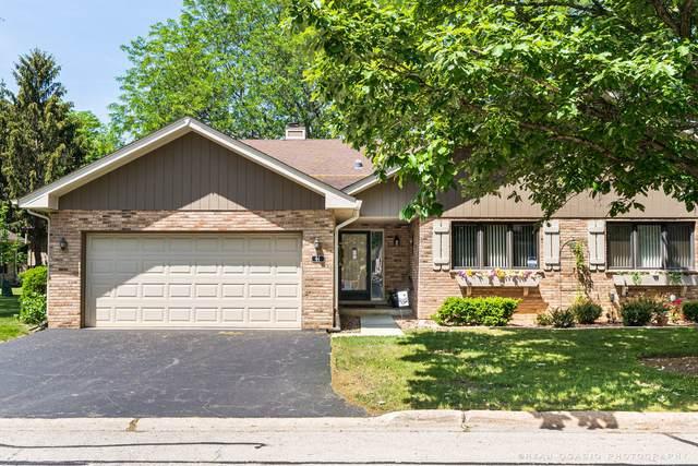 44 Chelsea Street, Bloomingdale, IL 60108 (MLS #11113281) :: BN Homes Group