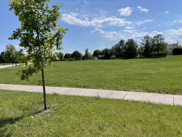 25102 Old Oak Lane, Shorewood, IL 60404 (MLS #11113700) :: The Wexler Group at Keller Williams Preferred Realty