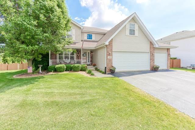216 Colony Lane, New Lenox, IL 60451 (MLS #11114138) :: Littlefield Group