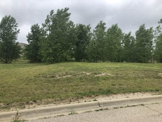162 N Bend Way, Elgin, IL 60124 (MLS #11114234) :: Suburban Life Realty