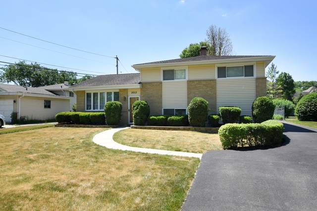 2013 E Tano Lane, Mount Prospect, IL 60056 (MLS #11114695) :: BN Homes Group