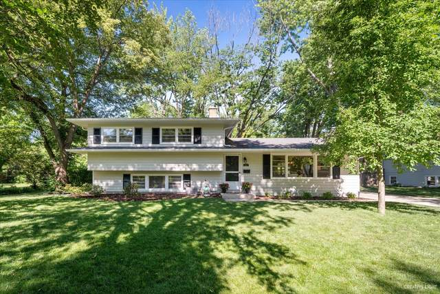 1029 Emerald Drive, Naperville, IL 60540 (MLS #11114852) :: BN Homes Group