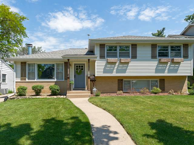 618 Gierz Street, Downers Grove, IL 60515 (MLS #11114894) :: John Lyons Real Estate