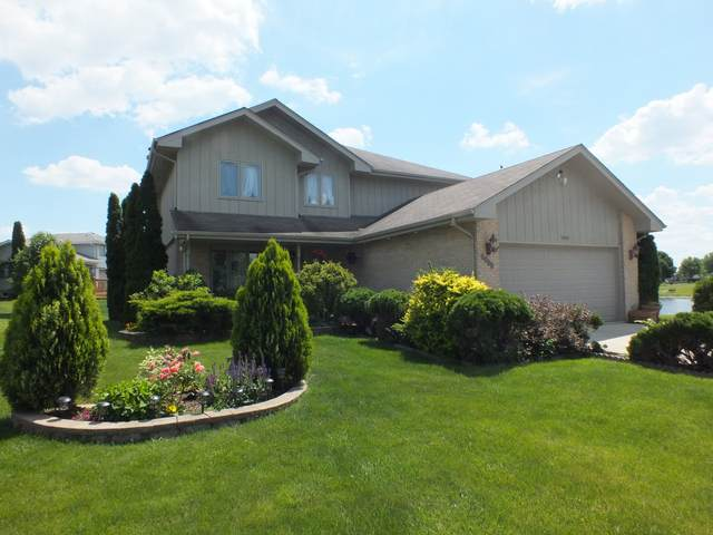 1001 Princeton Avenue, Romeoville, IL 60446 (MLS #11114917) :: O'Neil Property Group