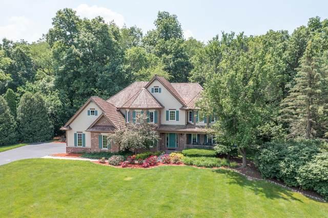 63 Oak Creek Drive, Yorkville, IL 60560 (MLS #11115099) :: O'Neil Property Group