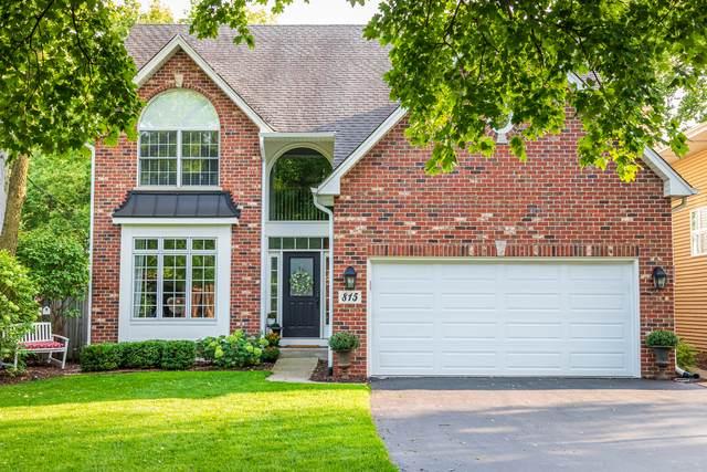 815 Birch Avenue, Downers Grove, IL 60515 (MLS #11115780) :: John Lyons Real Estate