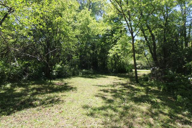 LOT 4 Maplewood Drive, Wonder Lake, IL 60097 (MLS #11115865) :: BN Homes Group