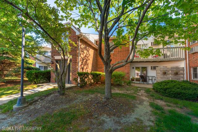 1331 Cunat Court 1D, Lake In The Hills, IL 60156 (MLS #11116154) :: Touchstone Group