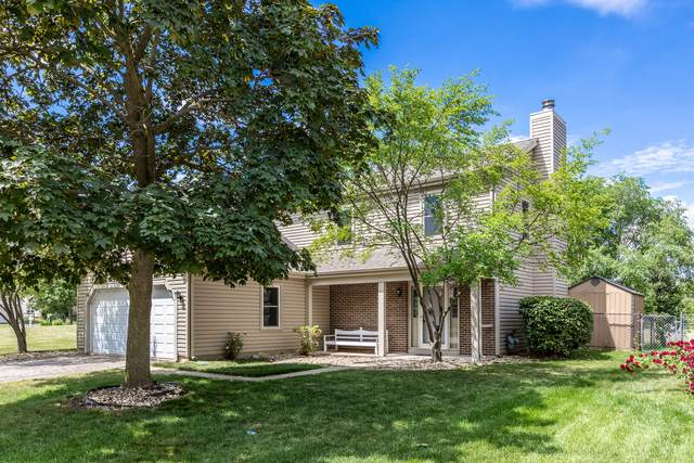 660 Radnor Drive, Roselle, IL 60172 (MLS #11116365) :: BN Homes Group