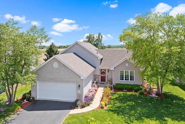 25617 S Daffodil Lane, Monee, IL 60449 (MLS #11116407) :: BN Homes Group