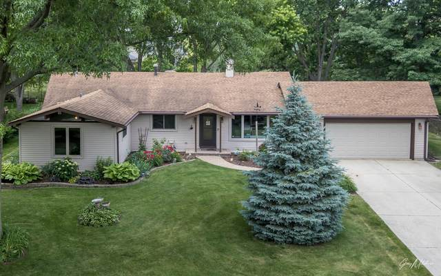 10S076 Alago Road, Naperville, IL 60564 (MLS #11116473) :: BN Homes Group