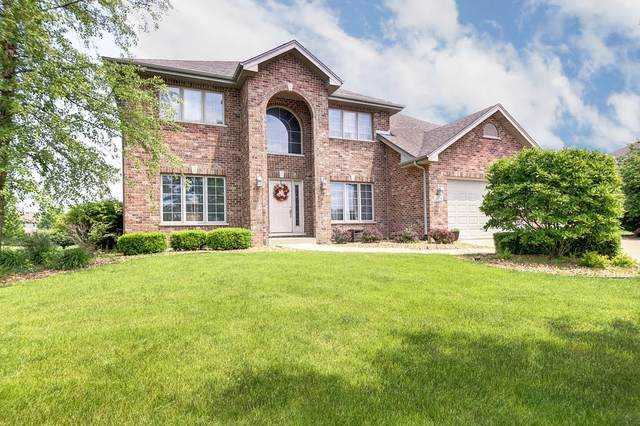 22731 Parkview Lane, Frankfort, IL 60423 (MLS #11116486) :: Schoon Family Group
