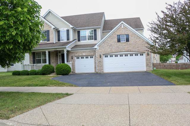 319 Buffalo Drive, Elgin, IL 60124 (MLS #11116752) :: The Wexler Group at Keller Williams Preferred Realty