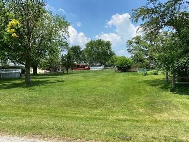 147 Terry Ellen Lane, New Lenox, IL 60451 (MLS #11116949) :: Littlefield Group