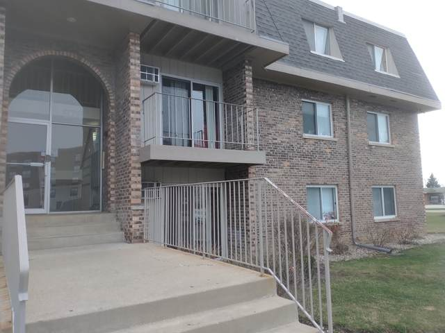 876 Crimson Court #102, Prospect Heights, IL 60070 (MLS #11116962) :: Touchstone Group