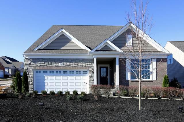 2079 Samantha Joy Lane, Bolingbrook, IL 60490 (MLS #11117062) :: BN Homes Group