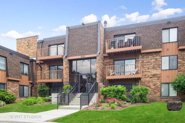 621 Tralee Court 1B, Schaumburg, IL 60193 (MLS #11117140) :: Ryan Dallas Real Estate
