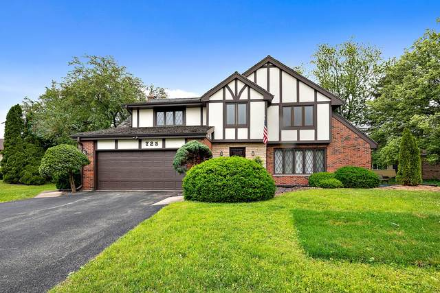 2S725 Ave Chateaux East E, Oak Brook, IL 60623 (MLS #11117376) :: BN Homes Group