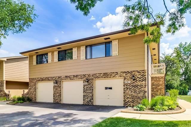 701 Whalom Lane #701, Schaumburg, IL 60173 (MLS #11117401) :: Ryan Dallas Real Estate